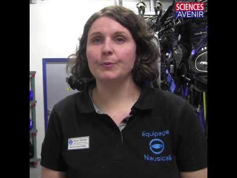 Est-ce que les soigneurs animaliers de Nausicaá sont spécialisés sur une seule espèce ?
