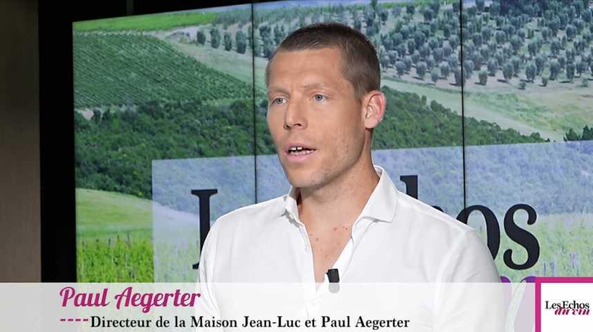 Illustration pour la vidéo Vin : l'explosion des prix du vignoble, un danger pour les vignerons