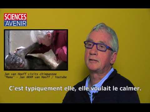 La mort de Mama, entretien avec Frans de Waal