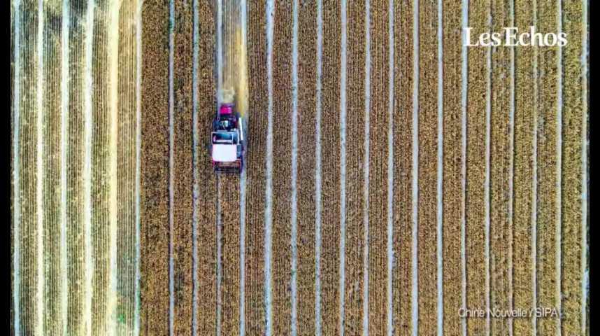 Illustration pour la vidéo Produits agricoles : pourquoi la demande va fortement ralentir