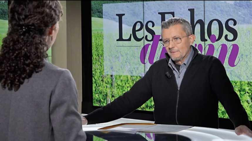 Illustration pour la vidéo Vin : face aux scandales viticoles, l'appellation redouble d'importance