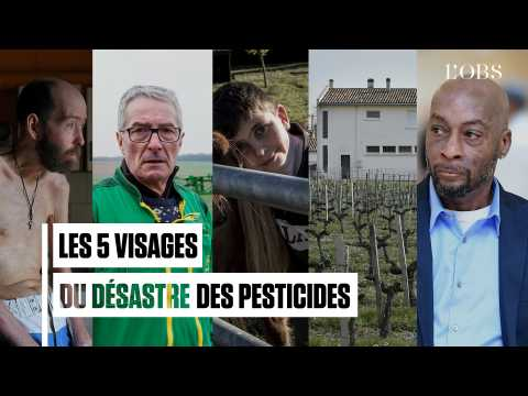 Théo Grataloup, Dewayne Johnson, Dominique Marchal... Les 5 visages du désastre des pesticides