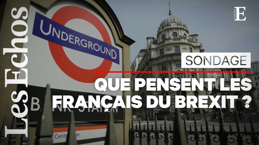 Illustration pour la vidéo 3 Français sur 4 jugent que le Brexit n'aura pas d'effet
