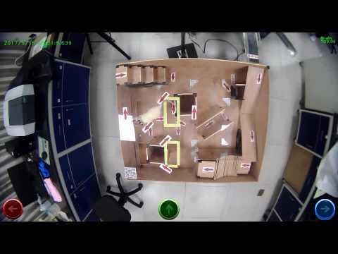 Un rat-cyborg piloté par un cerveau humain