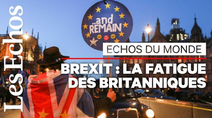 Illustration pour la vidéo Brexit : les Britanniques « atterrés »