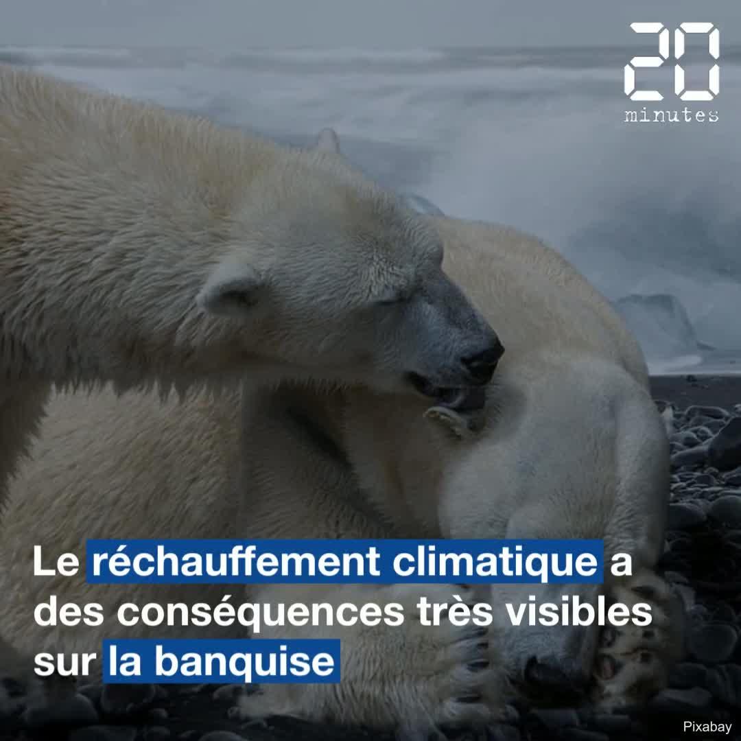 Les catastrophes climatiques touchent de plus en plus la planète