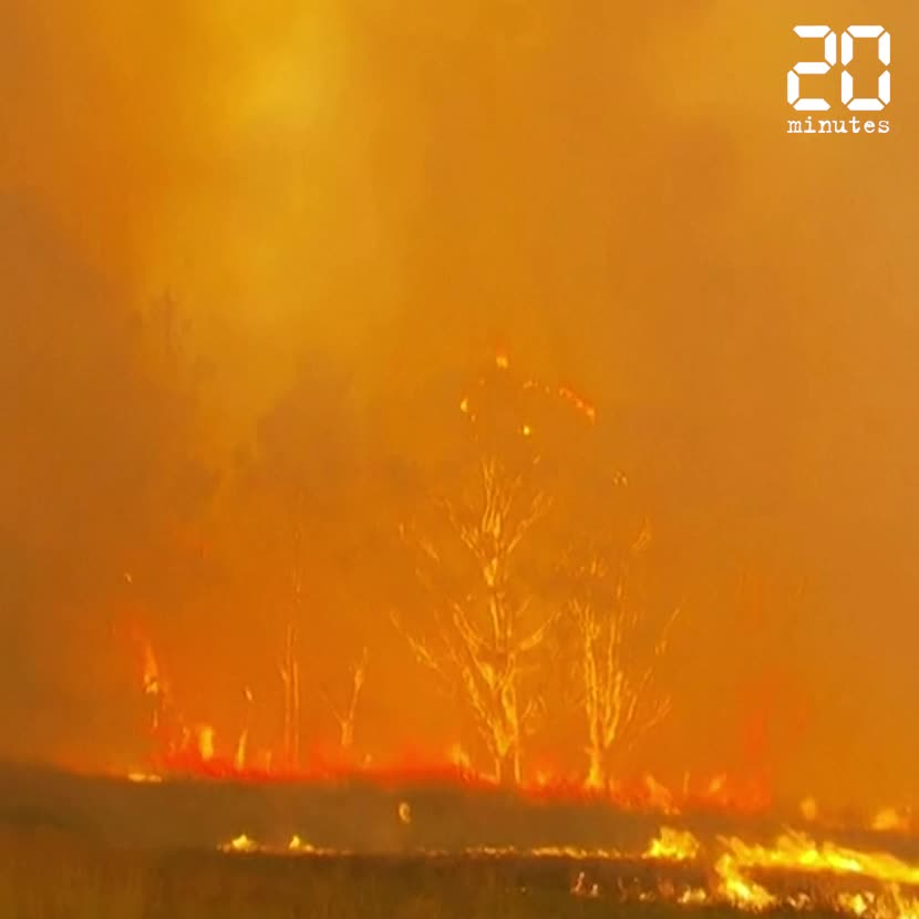 Les chiffres des incendies en Australie d'une ampleur inédite