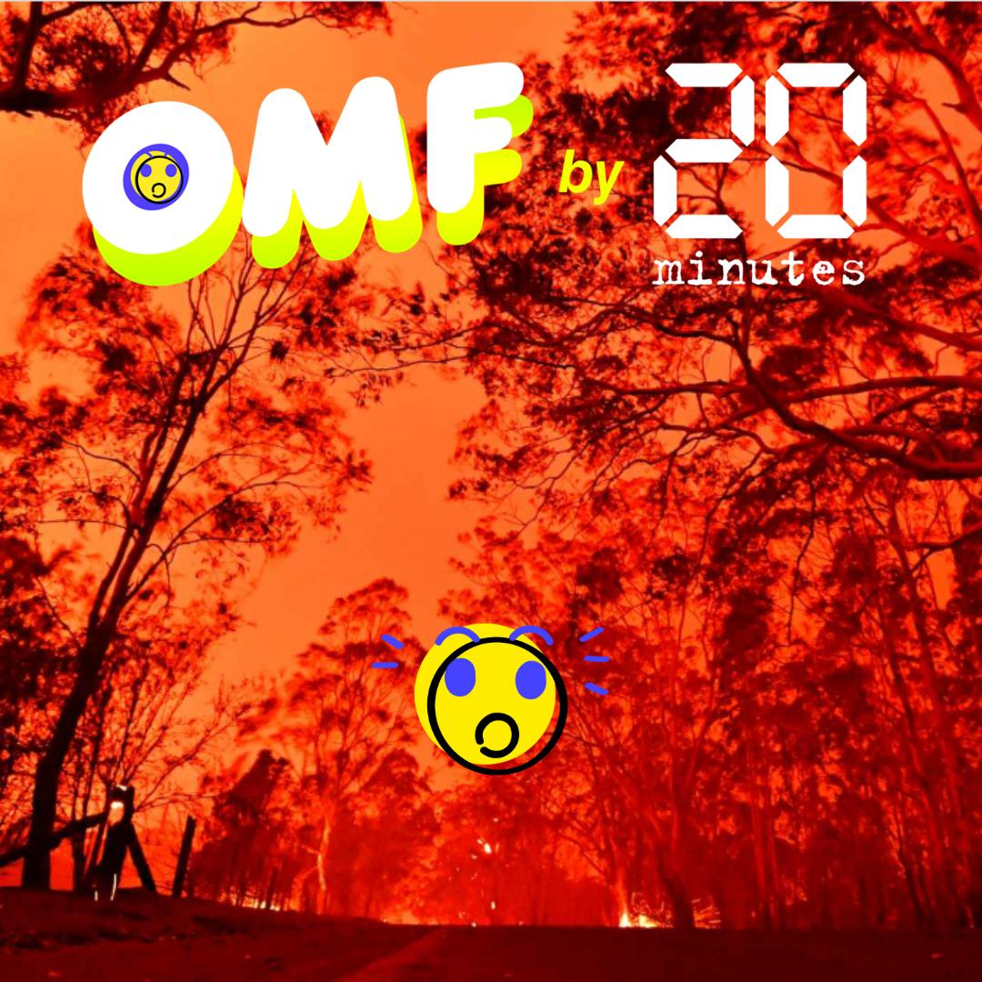 OMF Oh my fake : incendies en Australie, la faute à qui ?