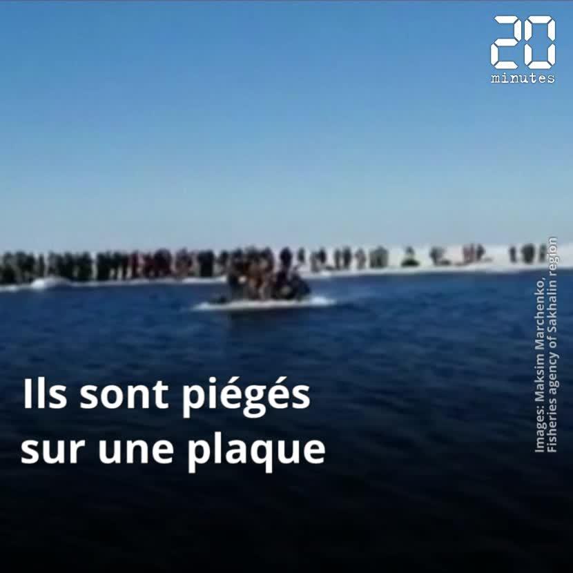 536 pêcheurs piégés sur la banquise secourus en Russie