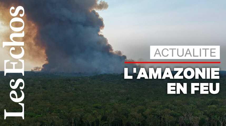 Illustration pour la vidéo L'Amazonie victime d'incendies dévastateurs