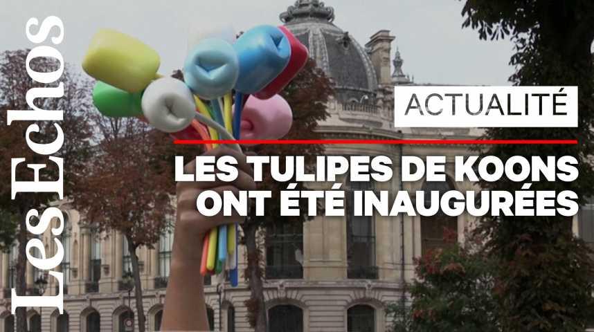 """Illustration pour la vidéo Jeff Koons ou la fin de la """"crise"""" des tulipes"""
