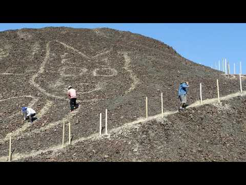 Giant cat drawing discovered on a hillside in Peru