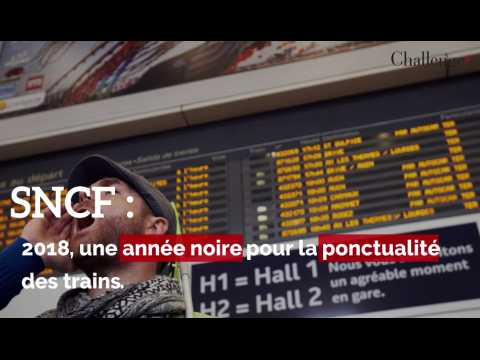 SNCF: un rapport épingle les retards des trains en 2018