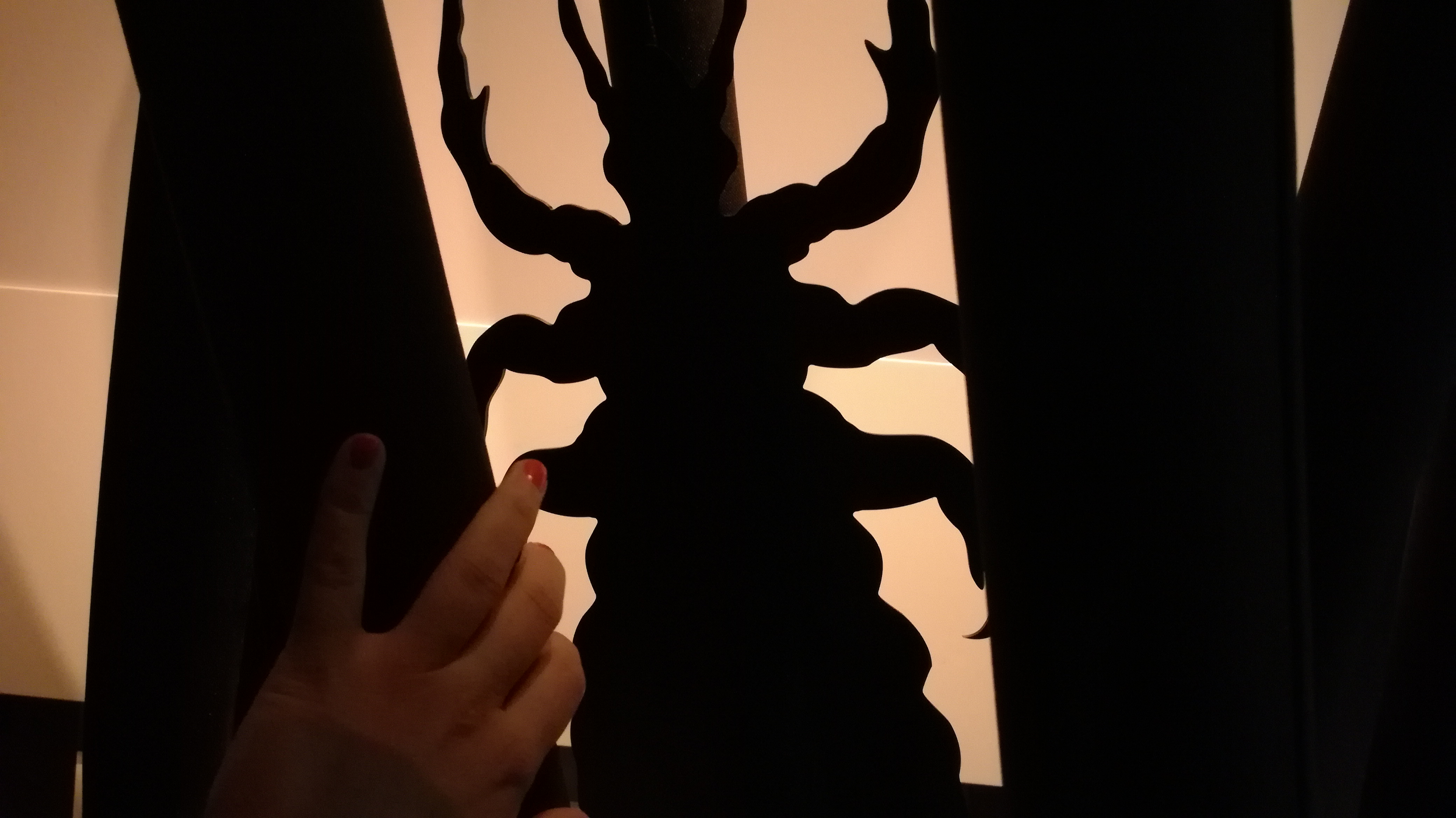Lyon: Puce, tique, pou... Un autre regard sur ces parasites proposé au musée des Confluences