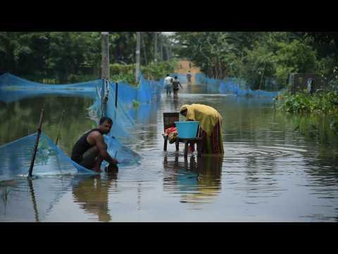 Monsoon rains wreak flood havoc in India's Assam