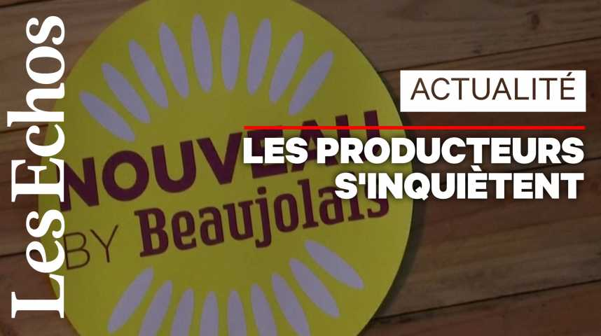 Illustration pour la vidéo Les producteurs de Beaujolais nouveau inquiets des taxes de Trump