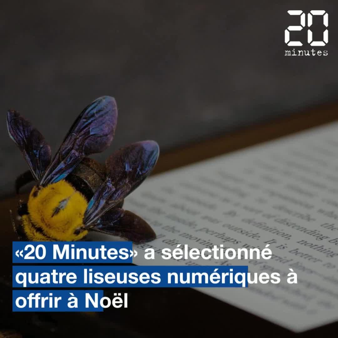 VIDEO. Quatre liseuses vendues de 79 euros à 279 euros pour ouvrir un nouveau chapitre au pied du sapin