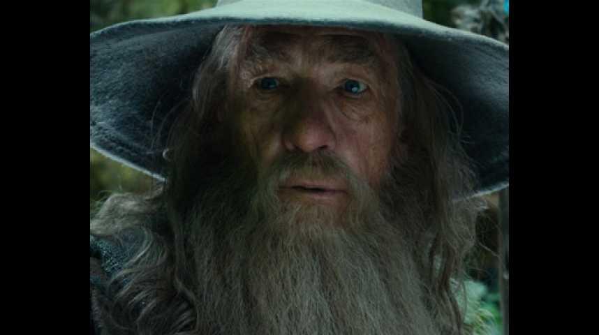Le Hobbit : un voyage inattendu - Extrait 24 - VF - (2012)