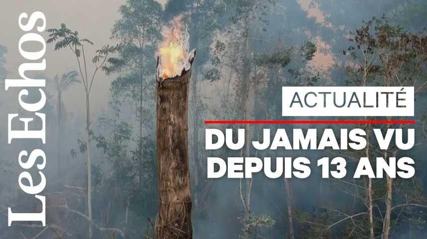 Illustration pour la vidéo Brésil : l'Amazonie de nouveau sous la menace des incendies