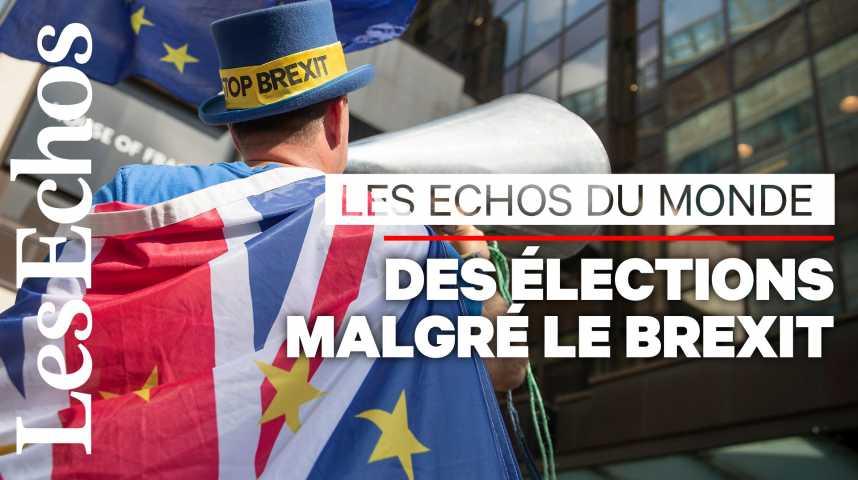Illustration pour la vidéo Elections européennes : au Royaume-Uni, une campagne paradoxale