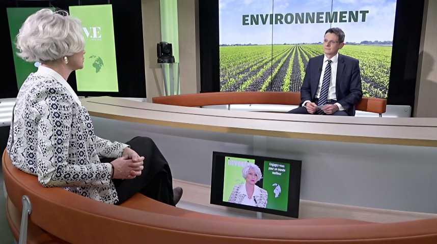 Illustration pour la vidéo Les entreprises qui s'engagent pour une neutralité carbone