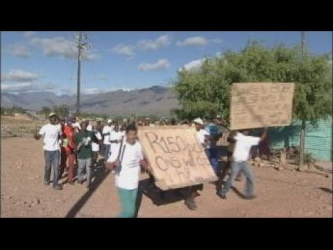 South Africa: Farm workers' fury over low wages