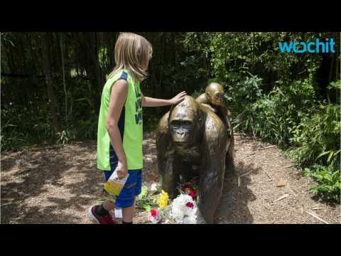 Zoo Reopens Cincinatti Zoo's Gorilla Exhibit