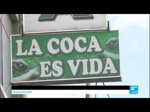 Bolivia: Morales signs controversial bill nearly doubling coca cultivation land