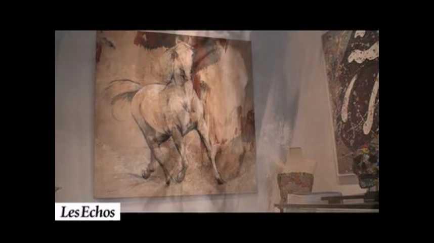 Illustration pour la vidéo Les oeuvres d'art échappent à l'ISF