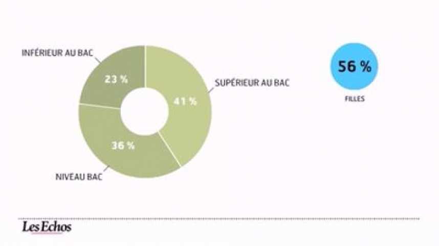 Illustration pour la vidéo L'infographie du jour : pari réussi pour le service civique