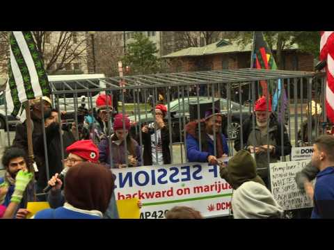 Marijuana activists hand out free joints for #Trump420 in DC
