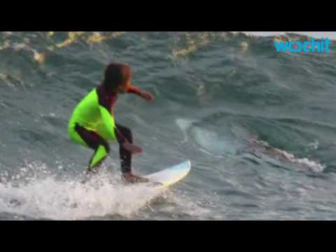 Child Surfer Has Close Call With Great White Shark in Australia