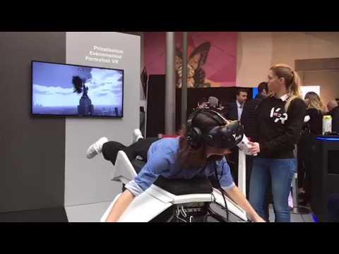 Volez comme un oiseau... en réalité virtuelle