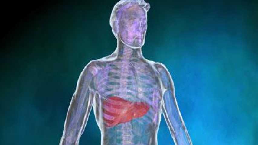Top Cancer du foie : Symptômes , Définition , Diagnostic , Traitements  VZ92