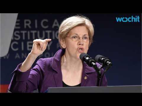 Elizabeth Warren Scores Victory In Democratic Platform