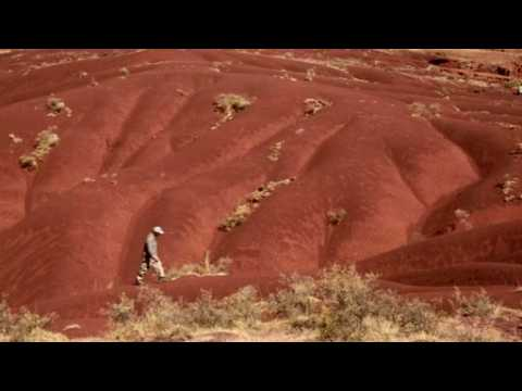 Meter-wide dinosaur print, one of largest ever, found in Bolivia