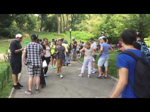 New Yorker Pokemon GO Fans Swarm Central park for Rare Pokemon