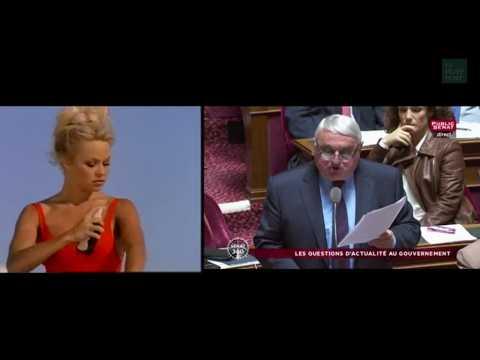 Un sénateur s'en prend à Pamela Anderson