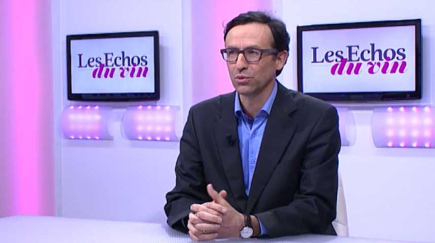 Illustration pour la vidéo Vin : le système des primeurs à Bordeaux est-il encore justifié?