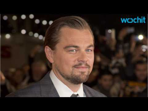 Leonardo DiCaprio's Donors and Investors Involved in Malaysian Embezzlement