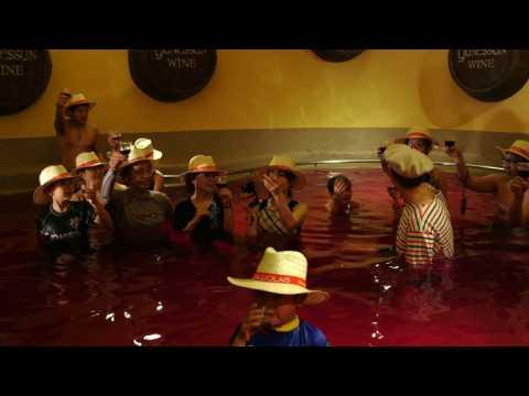 Japanese bathe in wine to celebrate Beaujolais Nouveau