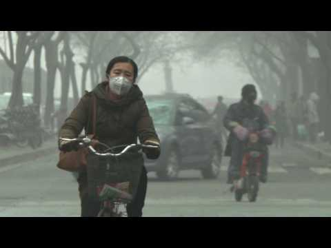 China's smoggiest city closes schools amid public anger