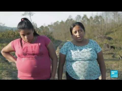 Kamala Harris visits Latin America to tackle migration, corruption