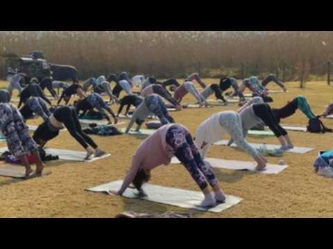 Johannesburg celebrates World Yoga Day