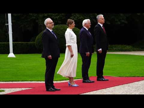 German President receives Latvian, Lithuanian and Estonian counterparts with military honors