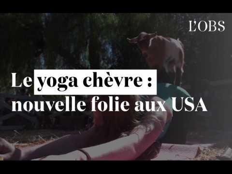 """Le """"yoga chèvre"""" déchaîne les passions aux États-Unis"""
