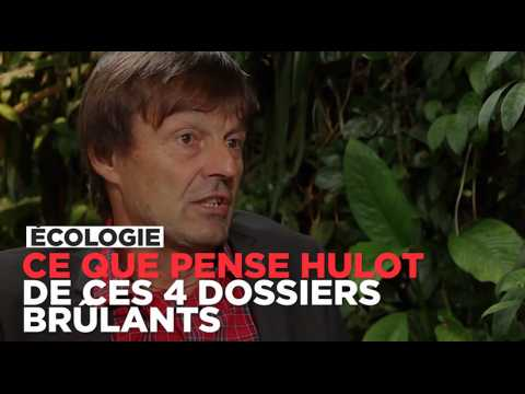 Ce que pense Nicolas Hulot du nucléaire, du gaz de schiste, de Notre-dame-des-Landes...