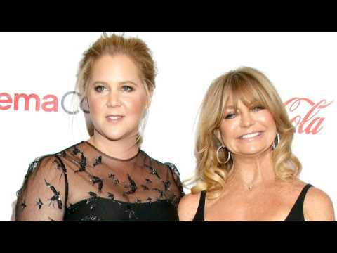 Amy Schumer's Dad Meets Goldie Hawn & It's Adorable