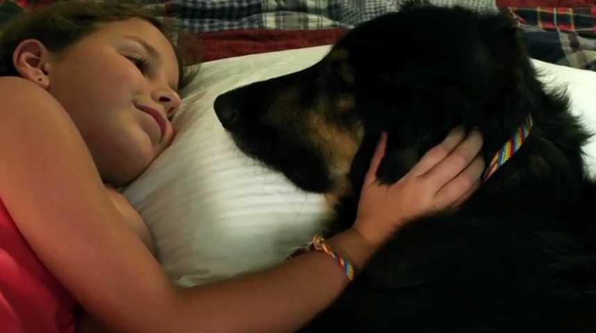 Shakey, un amour de chien - bande annonce - VOST - (2012)