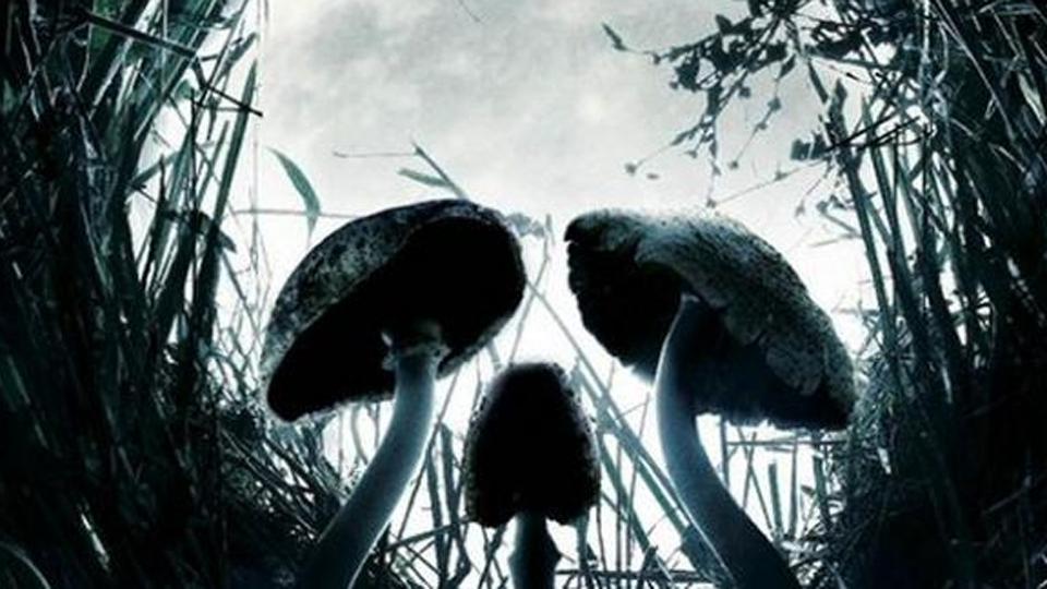 Shrooms - bande annonce - VOST - (2008)